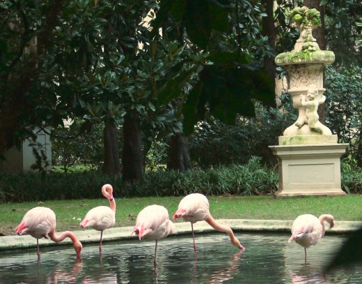 10 weird things to do in Milan. Pink flamingos in Villa Invernizzi